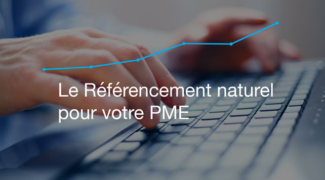referencement naturel pme